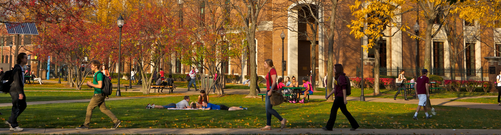 DePaul Students during the fall walking along the Quad pathways and laying out on the Grass