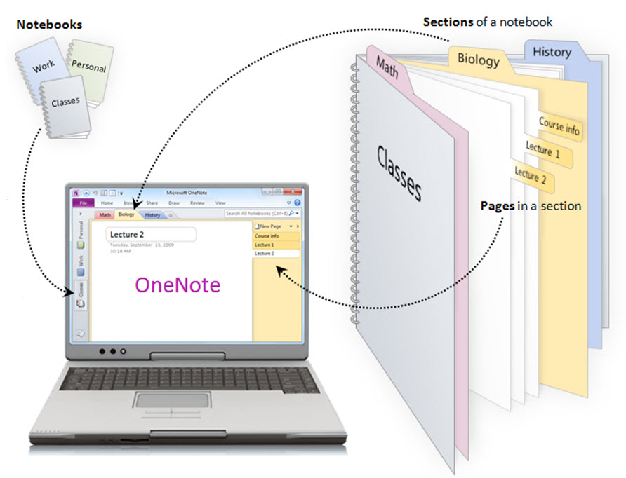 Onenote Notebook Paper Template