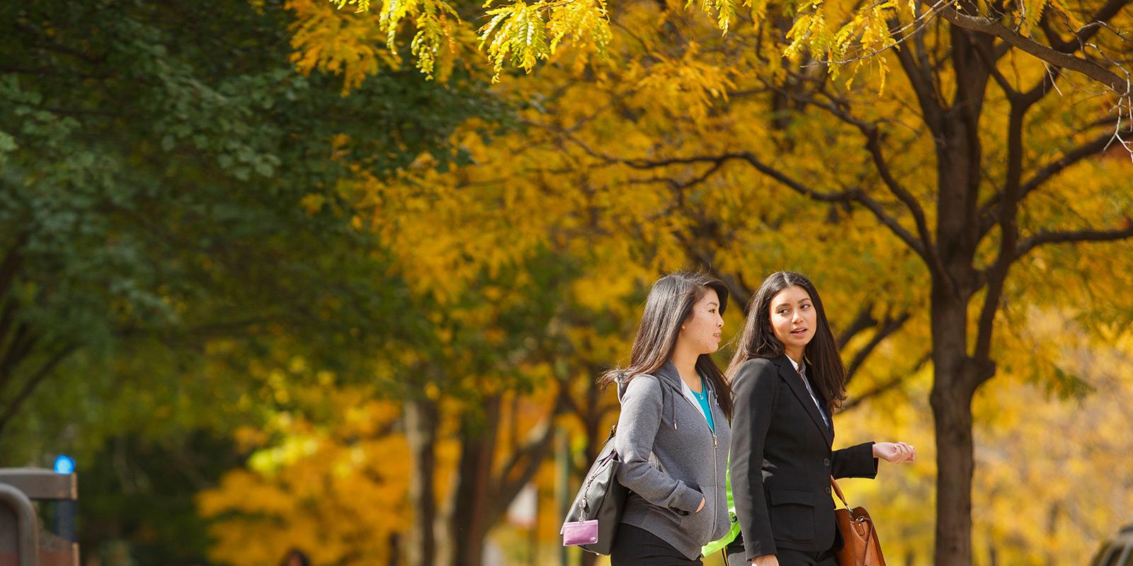 Depaul Fall 2020.University Registrar Depaul University Chicago